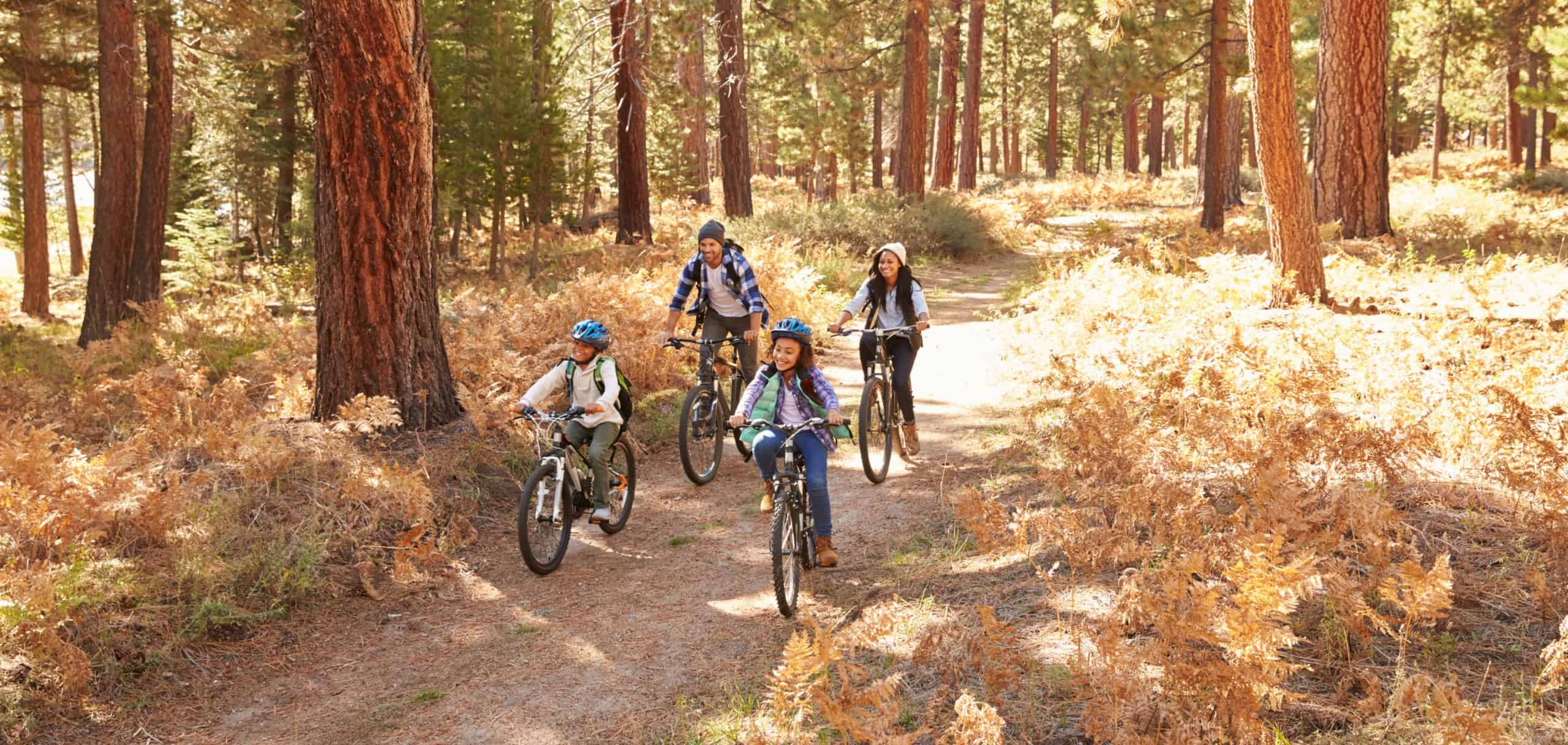 Family riding bicycles on a wooded trail.